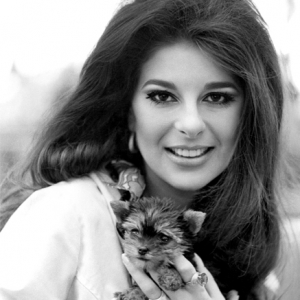 Bobbie Gentry at London Airport w yorkshire terrier Billie Joe July 1968